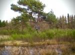 Jagtejendom Djursland Århus lufthavn2